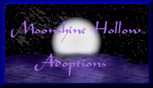 Moonshadow Hollow Adoptions